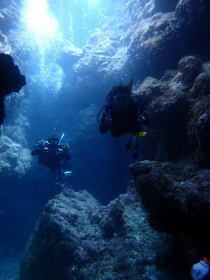 慶良間洞窟ダイビング