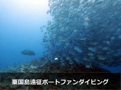 粟国島遠征ダイビング